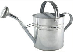 10L Traditional Watering Can